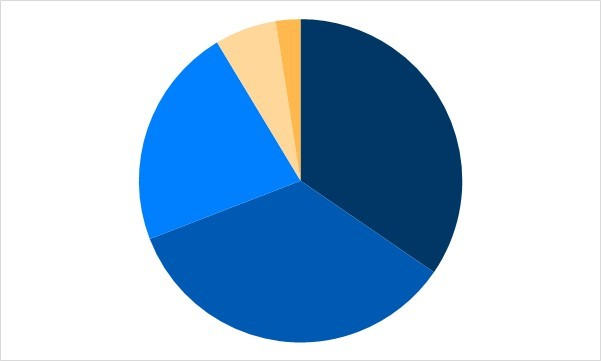 Auditor pie chart